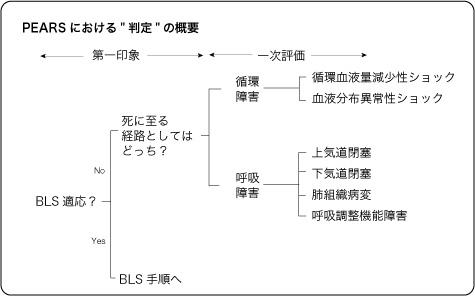 PEARSのアセスメント・判定法の概略