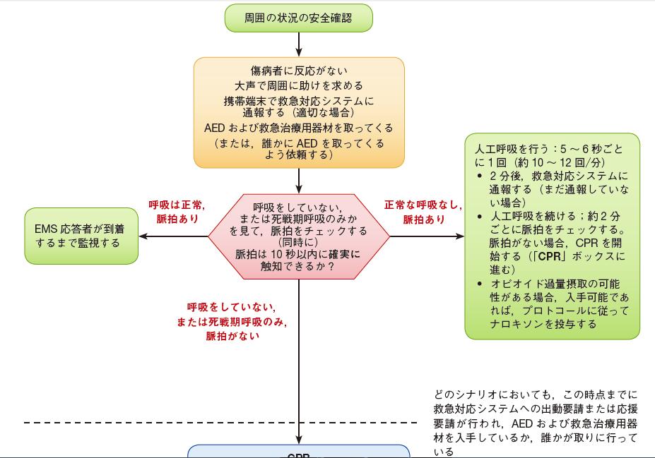 AHAガイドライン2015成人BLSのアルゴリズム一部抜粋