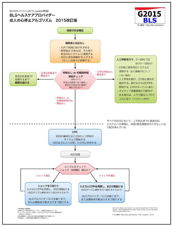 AHAガイドライン2015のBLS-HCPアルゴリズム