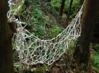 森のサバイバル実験室:手作りハンモックで森に揺られる