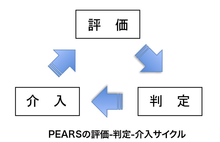 PEARS(ペアーズ)の評価-判定-介入のサイクル