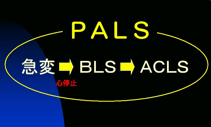 PALS-Gainen.jpg