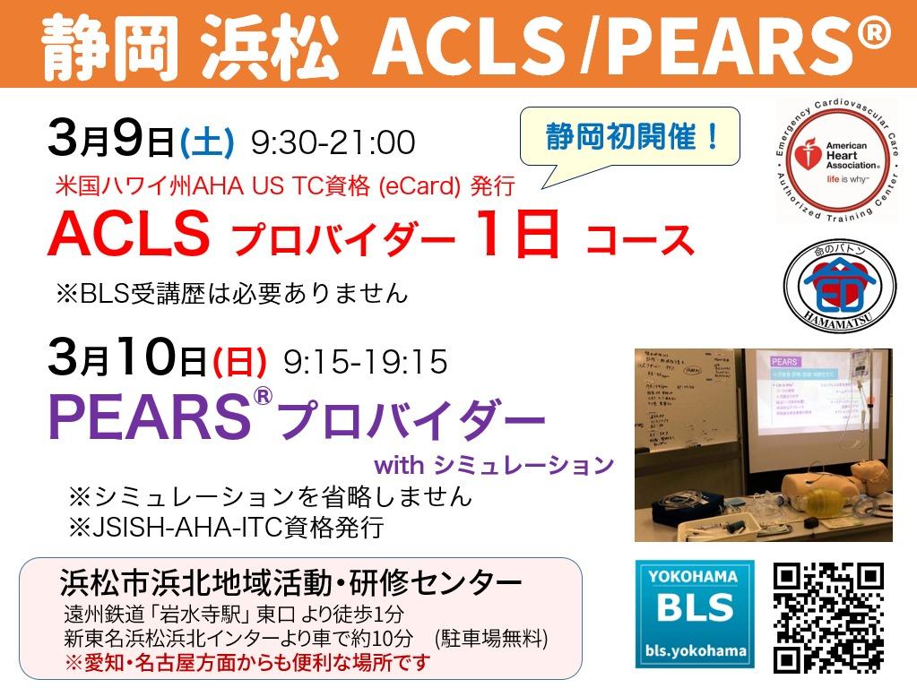 静岡県浜松市ACLSプロバイダー1日コース/AHA-PEARSプロバイダーwithシミュレーションを開催。愛知名古屋からの受講も。